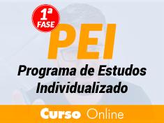 PEI - Programa de Estudos Individualizado 1ª fase