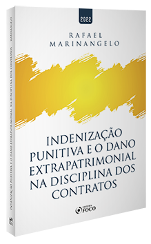 INDENIZAÇÃO PUNITIVA - 1ª ED - 2022